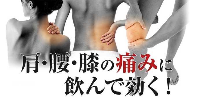 膝痛・腰痛・肩の痛み・加齢痛・五十肩に飲んで効く医薬品