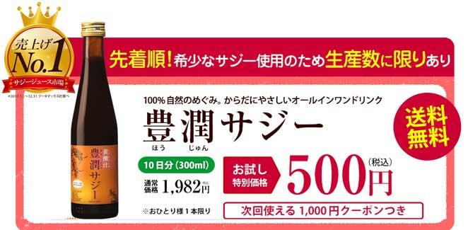 豊潤サジー500円お試しモニター