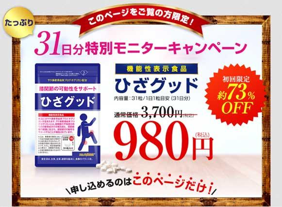 980円(税込)モニター実施中