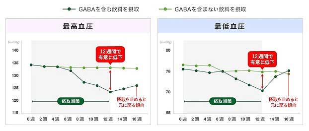 GABAの高めの方の血圧を下げる研究データ