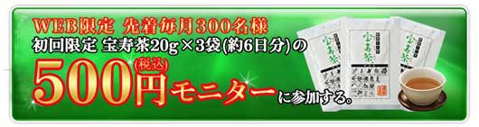 500円モニター